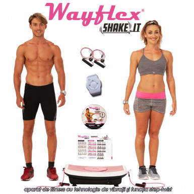 Wayflex Shake It!