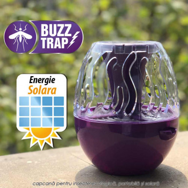 Buzz Trap