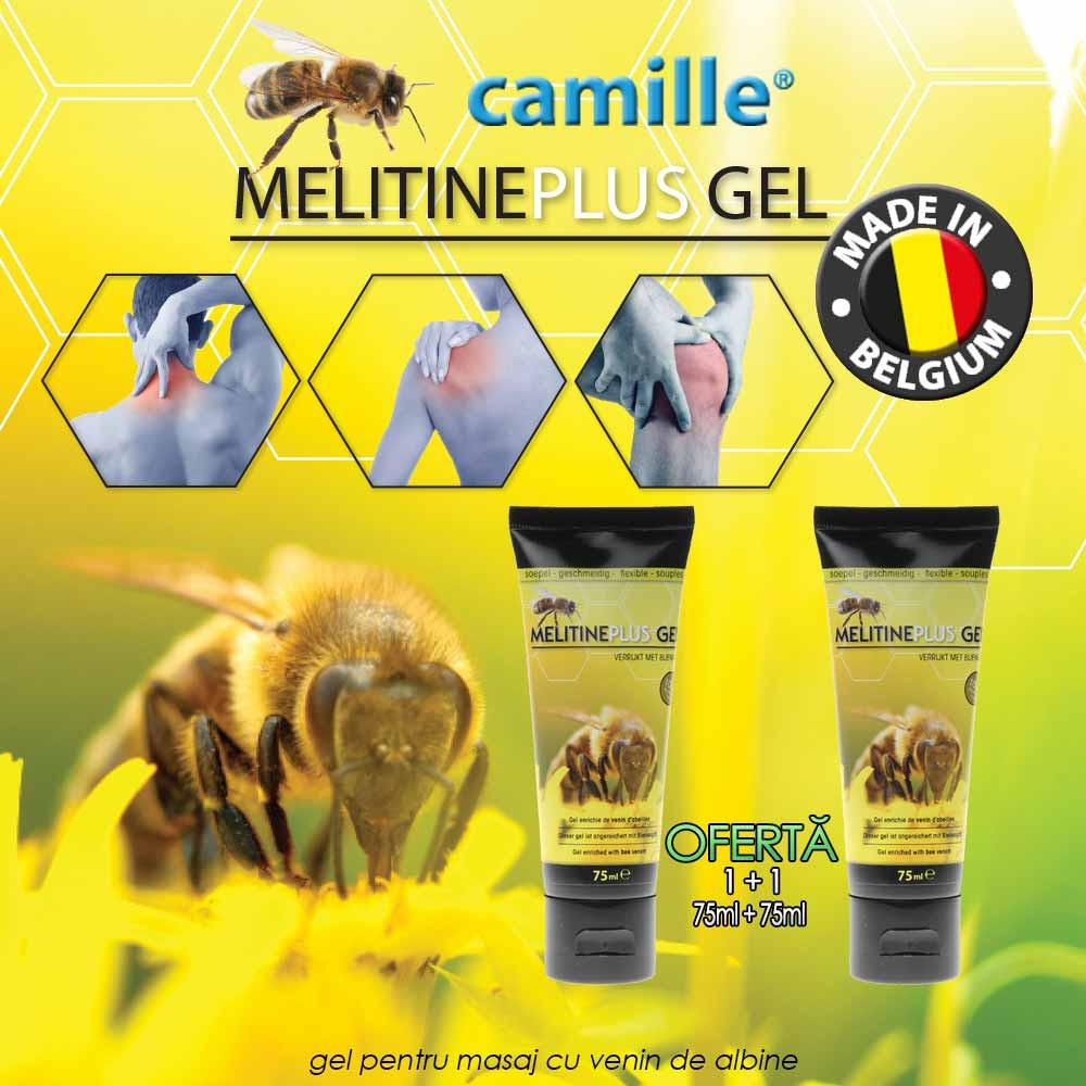 venin de albine din durerile articulare